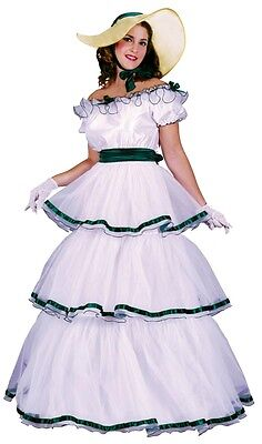 Fun World Southern Belle Adult Costume Ball Gown Victoria...