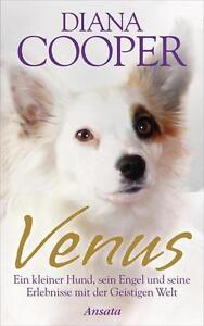 Venus: Ein kleiner Hund, sein Engel und seine Erlebnisse mit der Geistigen Welt