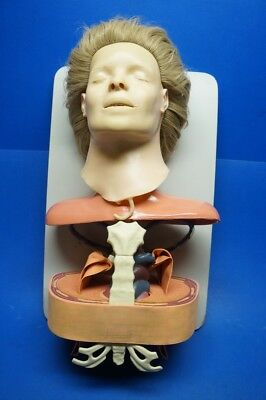 Asmund S.laerdal Anatomical Training Anne Manikin Female Anatomic