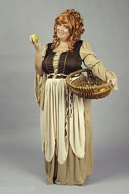 grosse Größen Mittelalter Kleid Gewand Damen Kostüm Freifrau Ritterspiele 48-50