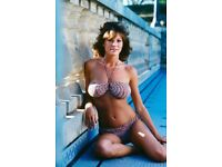 Candy Loving Pool Table Playboy Model 1979  Poster n 13x19 inches iN