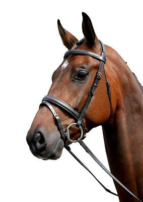 Kincade Padded Leather Flash Bridle with Laced Reins and V-Shaped -
