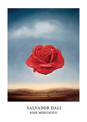 The Rose Meditative, 1958 by Salvador Dali Art Print Poster 20x28