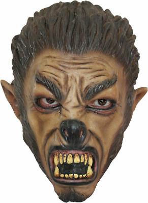 Morris Costumes Boys Horror Wolfman Realistic Over The Head Latex Mask. TB25405 (Realistic Horror Halloween Costumes)