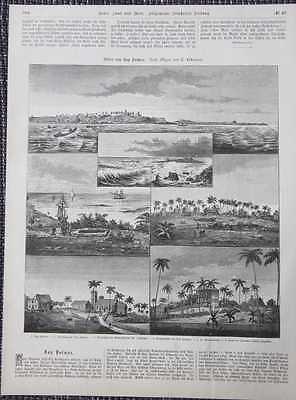 Kap Palmas Cape Kamerun HOLZSTICH von 1885 Deutsche Kolonien Westafrika