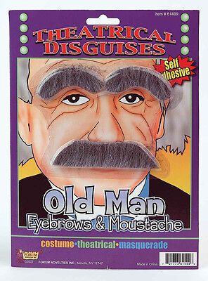 Old Man Eyebrows & Moustache Set  Einstein Mustache Self - Einstein Moustache