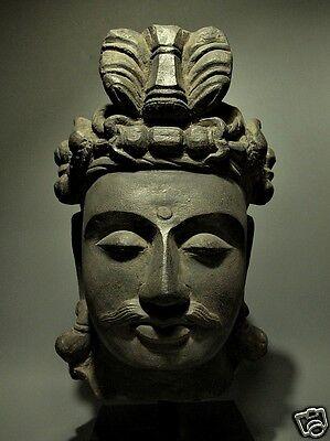 ORIGINAL SOLID SCULPTURE HEAD BUDDHA SANDSTONE GANDHARA FIGURE ARTIFACT 4/5TH C