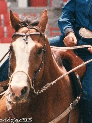 """Bozo Sidepull Rope Nose Hackamore Original 7-1/2"""" Shank by Classic Equine New"""