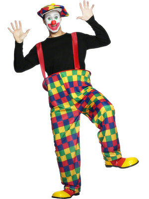 Mens Hooped Clown Costume Hoop Pants Hat Bow Tie Rainbow Plaid Adult Halloween