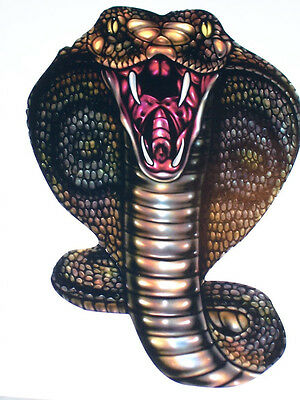 Cobra Snake Vinyl Window Decal Decals Hunting Sticker Mustang Tailgate Snakes GT Cobra Window Decal