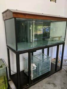 5x2x2 aquarium with stand hood and sump