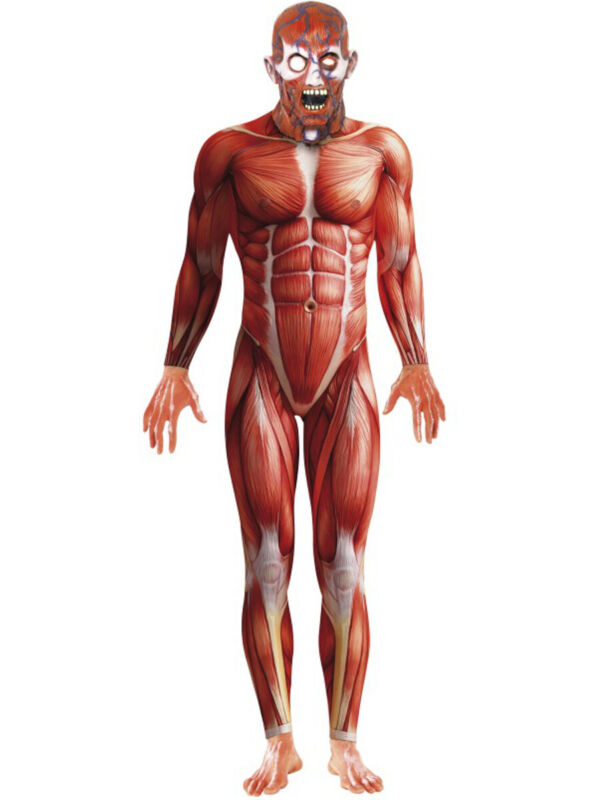 Mens Muscle Anatomy Anatomical Body Structure Bodysuit Costume