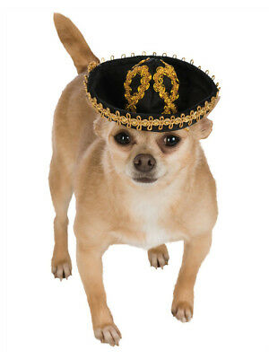 Black Gold Mexican Cinco De Mayo Day of the Dead Sombrero Hat For Pet Dog (Cinco De Mayo Dog)