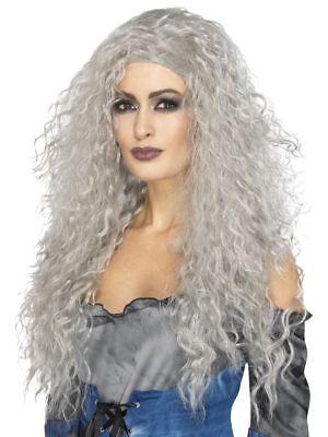 SMI - Damen Langhaar Perücke grau Hexe Vampirin Zombie Halloween ()