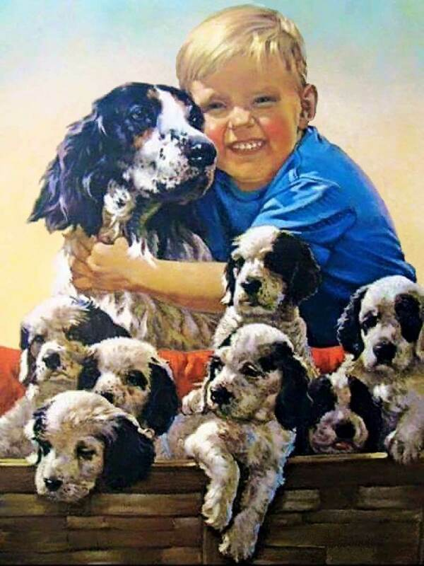 ANTIQUE HUNTING PHOTOGRAPH REPRINT 8X10 BOY WITH ENGLISH SETTER AND PUPPIES