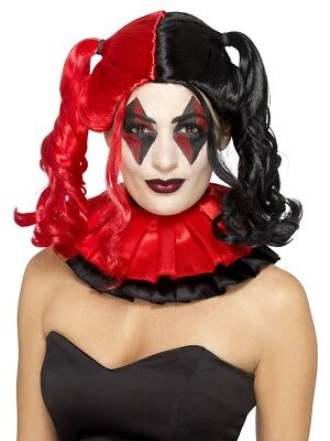 Twisted Harlequin Wig with Bunches Adult Womens Ladies Halloween Fancy Dress (Harlequin Wig)