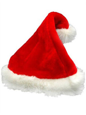 Adult Plush Fur-Trimmed Santa Hat - Plush Santa Hats