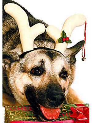 Dog Antlers Costume (Christmas Rudolf Costume Reindeer Antlers For Pet)