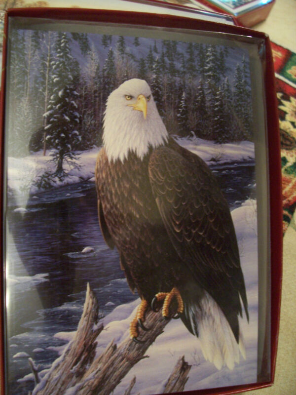 LEANIN TREE CHRISTMAS CARD SET BEAUTIFUL EAGLE IN WINTER 10 PK NEW ...