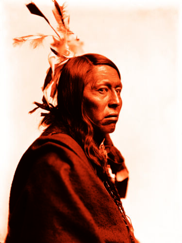 "Vintage Photograph - Flying Hawk, American Indian 1900 Canvas Art Poster 18""x24"""