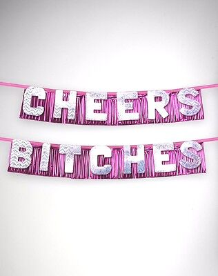 Bachelorette Party Supplies Cheers Bitches Wall Banner Birthday Bride Pink - Birthday Party Supplies Cheap