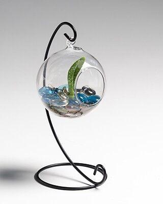 Terrarium Gardening (Glass Globe Terrarium, Elegant and Decorative with Free Urban Gardening eBook)