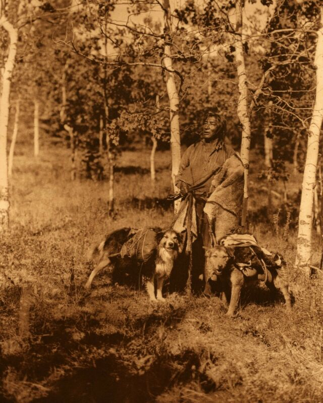 Assiniboin hunter - Edward Curtis Native American Photo