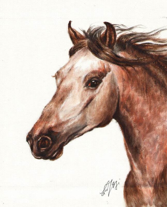 Original Oil HORSE Portrait Painting PONY Art Artwork on Canvas Brown Signed