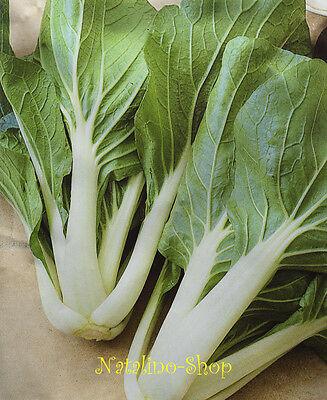100 Pak (*Pak Choi* 100+ Samen *Chinesischer Senfkohl* Echter Fitmacher* Salatsamen Salat)