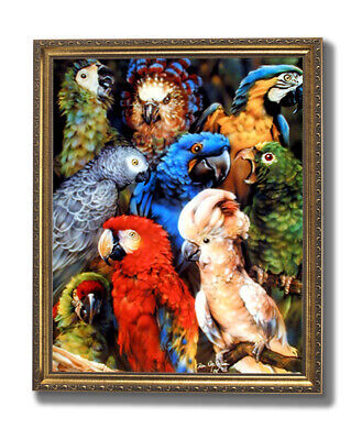 Tropical Parrot Bird Collage Animal Wildlife Wall Picture Gold Framed Art Print ()