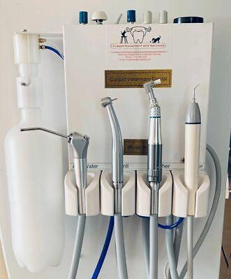 Cuspid Veterinary Dental W
