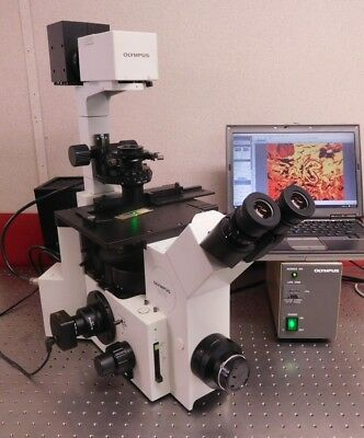 Olympus Ix70 Fluorescence Phase Contrast Inverted Microscope Live Cell Imaging
