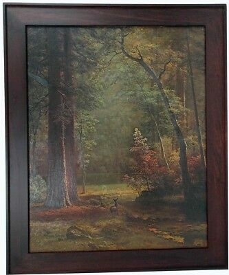 - Albert Bierstadt Dogwood Solid Wood Custom Frame Walnut Canvas Transfer 29 x 35