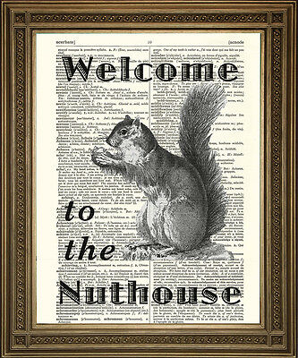 WELCOME TO THE NUTHOUSE: Squirrel Fun, Retro Antique Dictionary Page Art Print