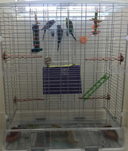 3 pet budgies and cage