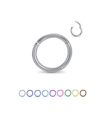 Titanium Hinged Segment Ring Nose Hoop Ear Cartilage 5/16