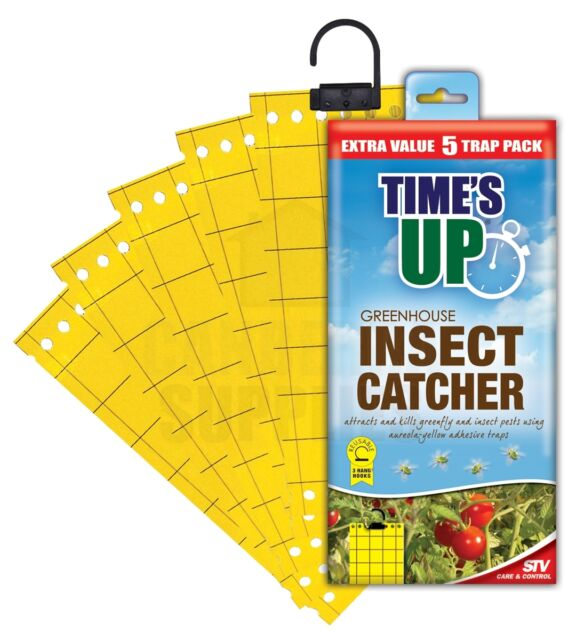 STV017 STV Times Up Greenhouse Insect Catcher Pack of 5
