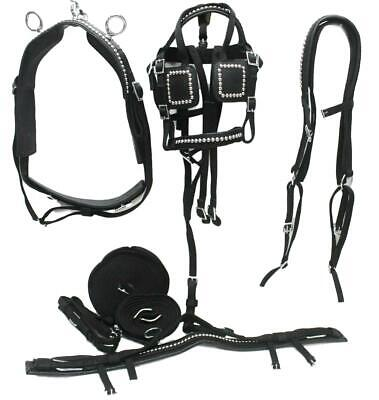 Driving Harness Set for SIngle Horse Good Quality Leather in Black Xfull to Shet