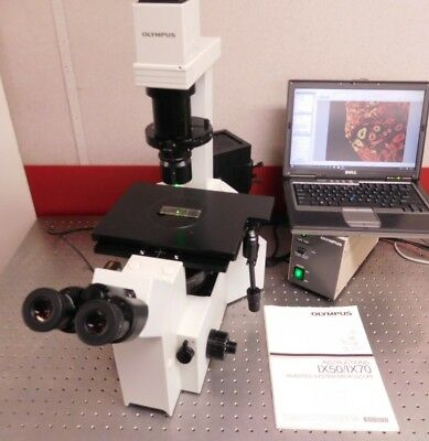 Olympus Microscope Ix 50 Inverted Fluorescence Phase Contrast 5mp