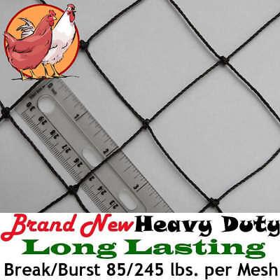 "Poultry Netting 25' x 100' 2"" Heavy Knotted Aviary Bird Net Break/Burst 85/245lb"