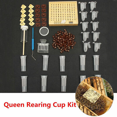 155pcs Queen Rearing System Bee Cultivating Box Beekeeping Grafting Grid Tool