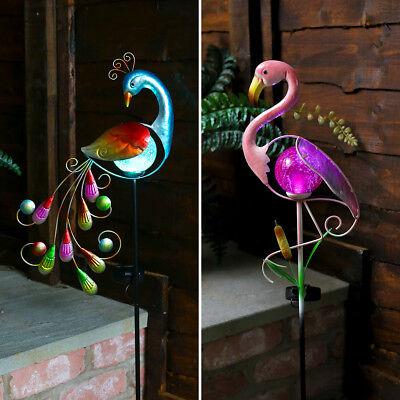 Solar Power Outdoor LED Peacock Flamingo Novelty Path Light | Garden Decoration