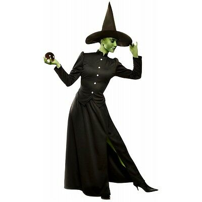 Wicked Witch of the West Costume Adult Halloween Fancy Dress (Witch Fancy Dress Costume)