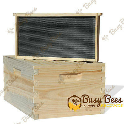 Langstroth Bee Hive 8 Frame Deep Box W Frames And Foundations
