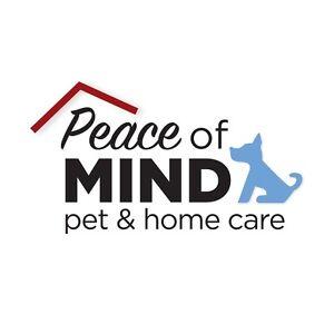 Home Pet Care Services North Tivoli Ipswich City Preview