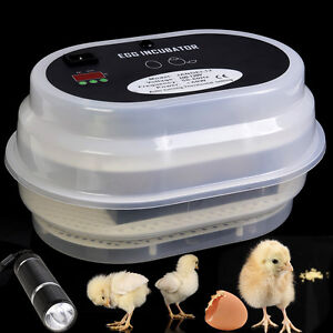 Automatic Egg Incubator Chicken Goose Duck Digital Automatic Turning Hatcher