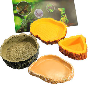 Resin-Reptile-Tortoise-Water-Dish-Food-Bowl-Toy-Amphibians-Gecko ...