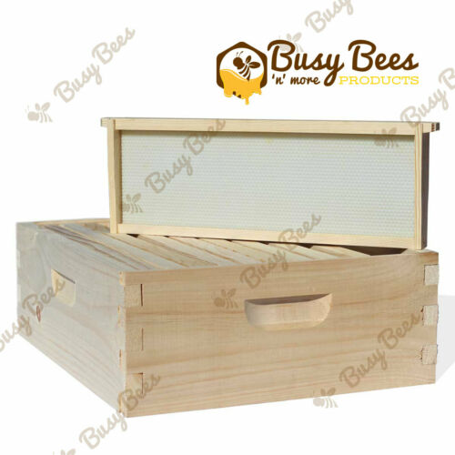 Langstroth Bee Hive 10 Frame Medium Box Amish Made w/ Frames and Foundations