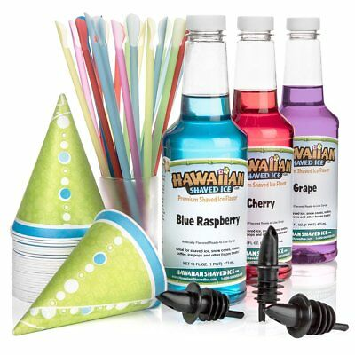 Flavor Fun Pack Of Snow Cone Syrup Pints Kit Spoon Bottle Cherry Grape Raspberry