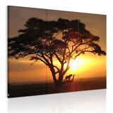 US SHIP HD Canvas Print Home Decor Wall Art Painting-Large Prairie Sunset Framed